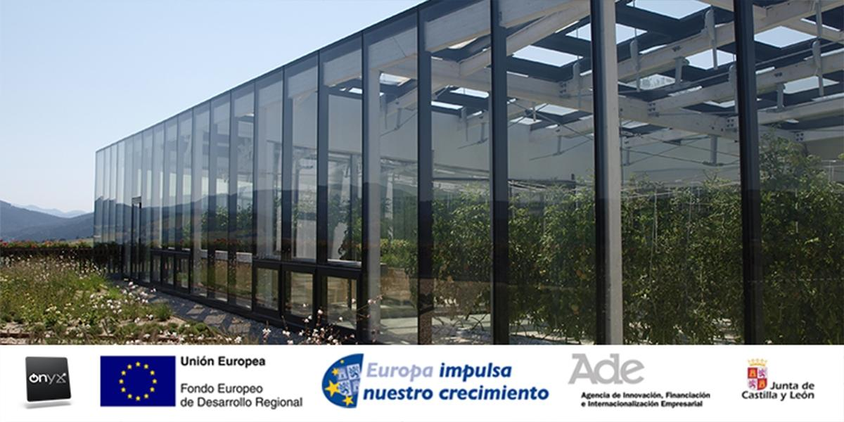 Solar PV Glass for sustainable greenhouses